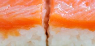oshizushi sushi senya nyc